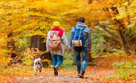 Actividades para que tu fin de semana sea más feliz