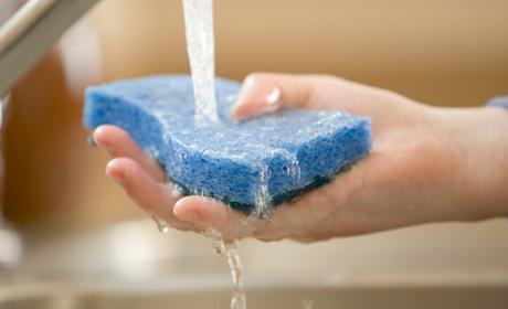 Aunque laves la esponja de tu cocina, lo mejor es que la cambies