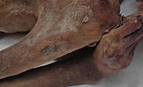 Los tatuajes más antiguos del mundo, un siglo ocultos en momias egipcias