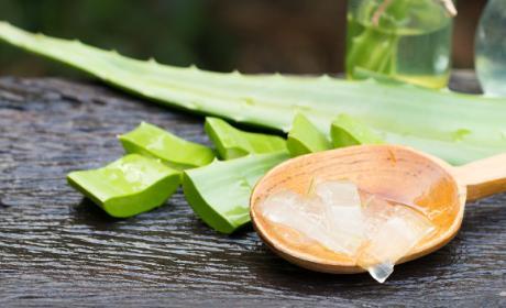 Propiedades medicinales para el aloe vera que son buenas para la salud.