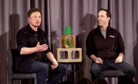 Ladrillos Elon Musk