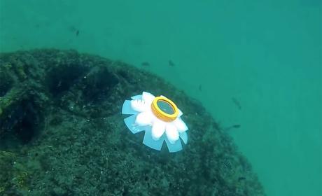robot medusa