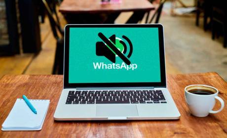 WhatsApp Web Silenciar