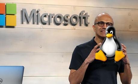 Microsoft y Linux