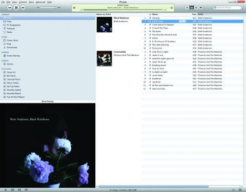 Configura el contenido de iTunes que sincronizarás