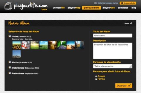 Organiza tus fotos en álbumes en Picyourlife