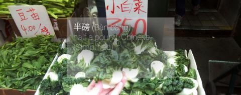 traducción de idioma en Google Glass