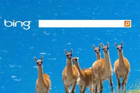Microsoft da versión especial de Bing -y Surface- a escuelas