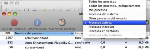 Filtra el listado de procesos en el Monitor de Actividad de tu Mac