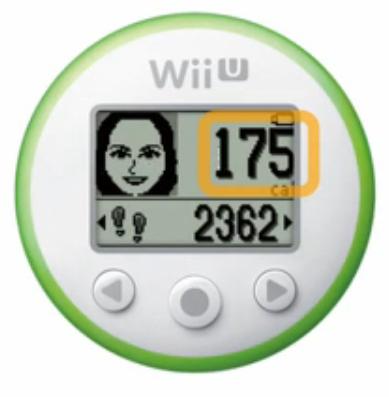 Wii Fit meter