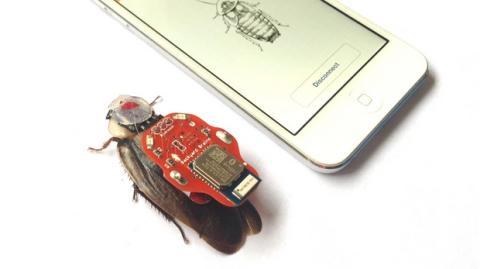 RoboRoach: controla los movimientos de una cucaracha viva con tu smartphone