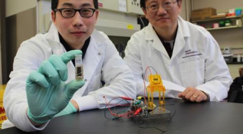 Investigadores crean baterías más duraderas a base de azúcar