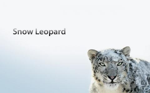 Apple, Mac, OS X Snow Leopard