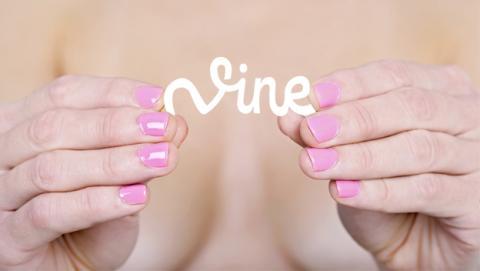 vine prohibe contenido pornográfico