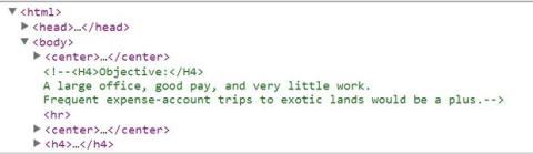 Comentario oculto currículo Sergey Brin, fundador de Google