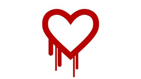 Heartbleed NSA seguridad