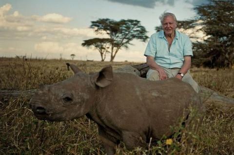 David Attenborough creará un documental para Oculus Rift. Foto: Mirror.co.uk