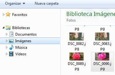 Selector de ficheros