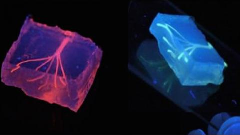 Vasos sanguíneos impresos en 3D