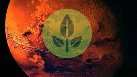 Nuevo proyecto de la NASA: poner un invernadero en Marte
