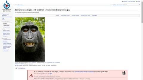 Wikimedia selfie mono