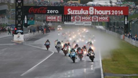 MotoGP cuerpo