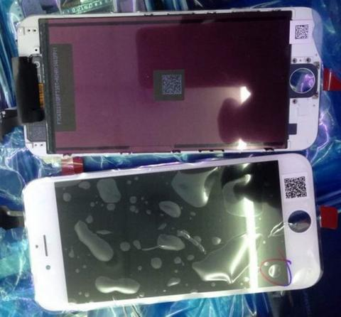 iPhone 6 de 5.5 pulgadas