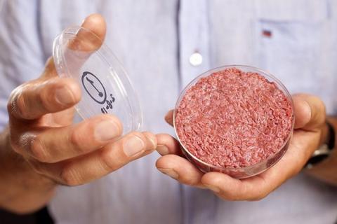 Proyectos alocados: Carne artificial