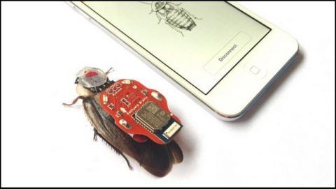 Cucarachas Ciborg