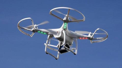 Así 'se carga' un canguro un drone de un puñetazo