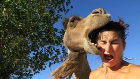 'Selfi' y no 'Selfie' ya es la palabra del año 2014