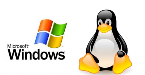 Linux es el sistema más usado en servidores