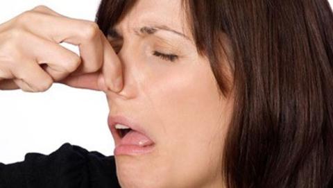 google mal olor