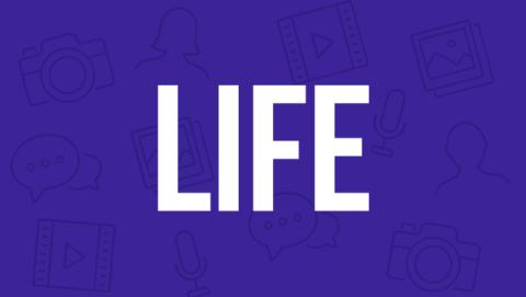 life nueva sección
