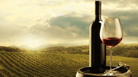 Beber una copa de vino quivale a una hora de ejercicio