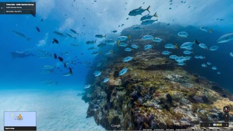 Google Street View llega al fondo marino de islas brasileñas