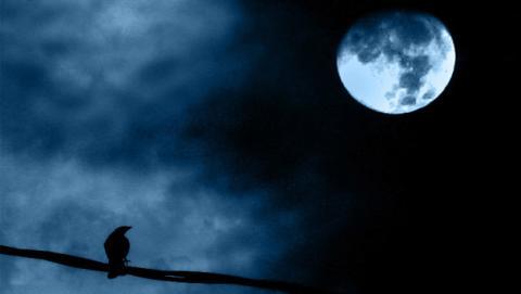 realmente afecta luna llena