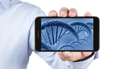 Modifican por primera vez el ADN de embriones humanos
