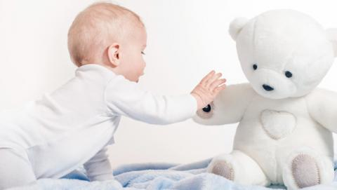Teddy The Guardian oso de peluche mide datos médicos