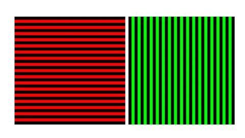 experimento pone en duda capacidad percibir colores