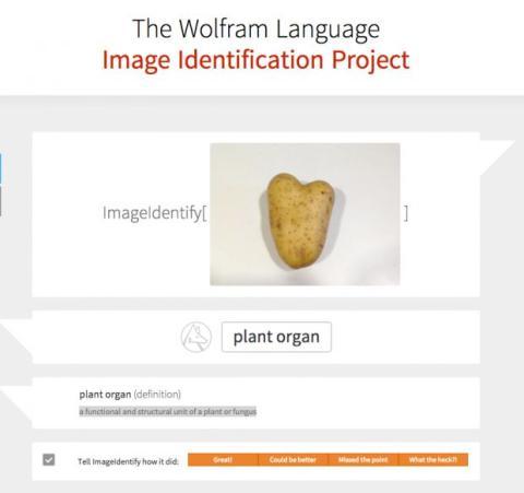 Wolfram Alpha te ayuda a identificar imágenes con Image Identify