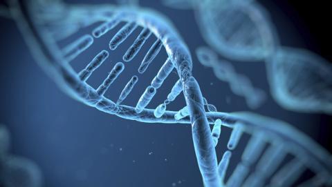 Premio Princesa de Asturias para un método de edición de ADN