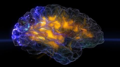 Las ondas cerebrales podrían sustituir a las contraseñas