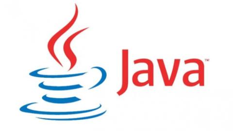 Lenguaje de programación Java como se paga