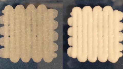 Un material fabricado en impresora 3D arregla huesos rotos