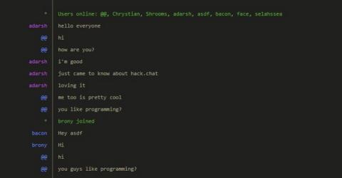 hack.chat, chat privado autodestruible