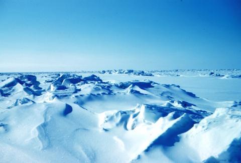 Nueva era glacial