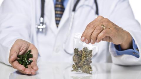 La marihuana ayuda a curar las fracturas de los huesos