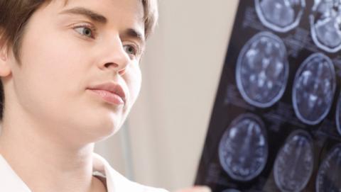 Cultivan cerebro humano funcional en laboratorio