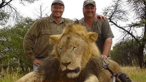cazadores y león